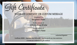 Baseball gift certificate template free yelopaper Images