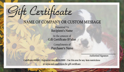 Pet Grooming Gift Certificate Templates | Easy to Use Gift ...